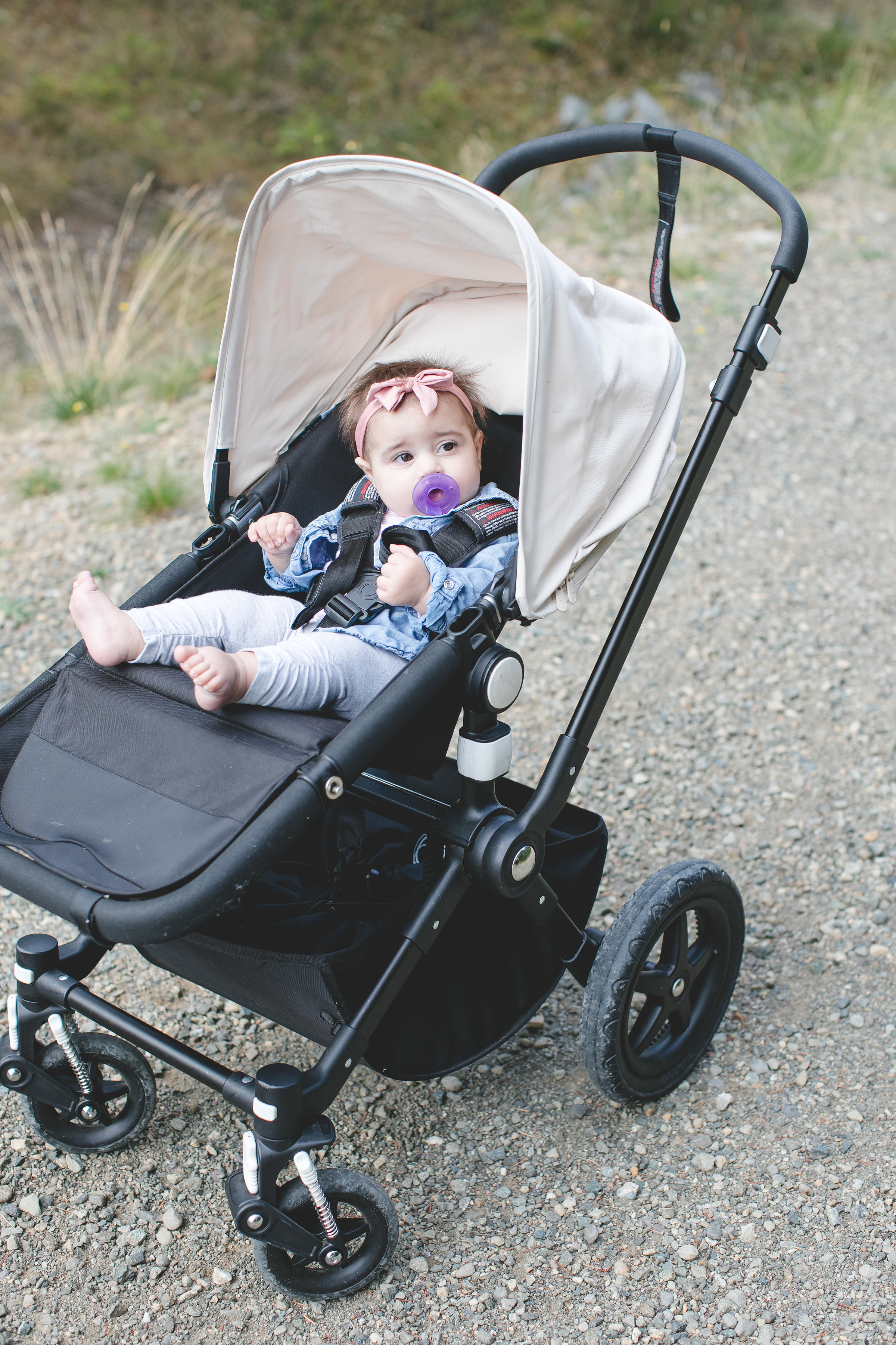 Choosing the best Stroller